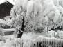 Inzing versinkt im Schnee